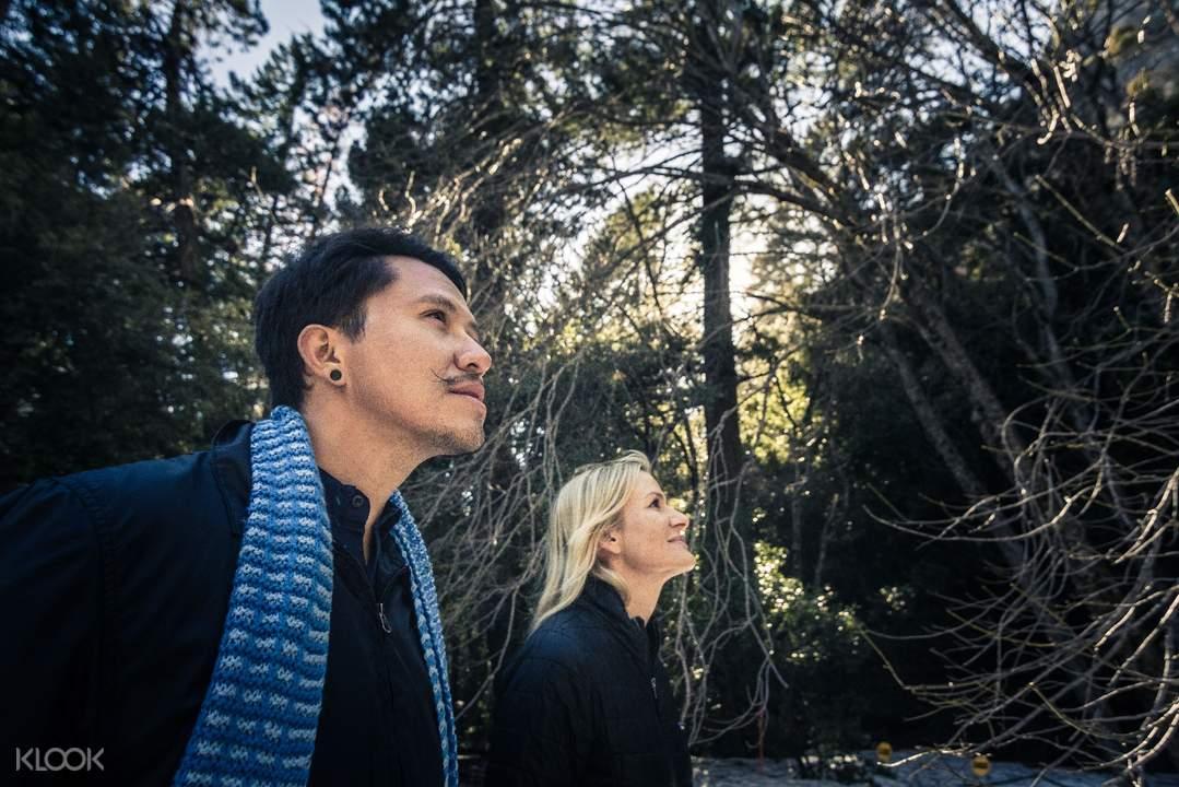 yosemite national park giant sequoia tour